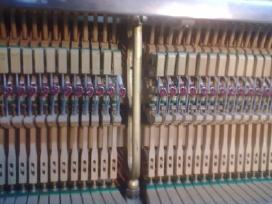 Superku koncertinius pianinus Petrof