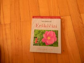 Sveikata knyga