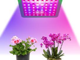 Augalų Led 300w lempa su augimo/žydėjimo mygtukais