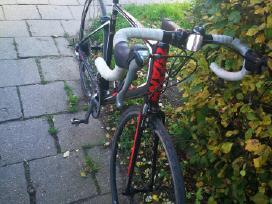 Giant Defy Karboninia plento dviratis L dydžio