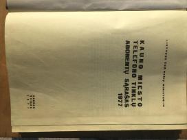 Knyga A. Šapokos