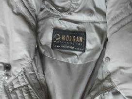 Morgan striukė ,viduje sinteponas, 40d.