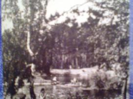 1967 m. atvirutė