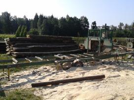 Mobilus gateris,pjauname mediena