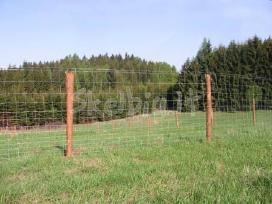 Vielos tinklas tvora miskams sodams ganykloms - nuotraukos Nr. 2
