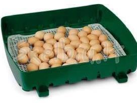 Išpardavimas! Itališki inkubatoriai - nuotraukos Nr. 9