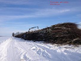 Krūmų, medžių kirtimas apleistose žemėse.primokame - nuotraukos Nr. 3