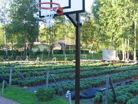 Krepšinio stovas,lankas,lenta,tinklelis,kamuolys