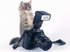 Fotografas megejas