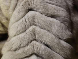 Prabangūs sidabrinės lapės kailiniai