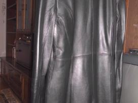Odinis paltukas