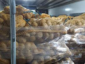 Ūkis parduoda bulves
