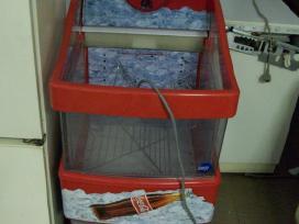 Šaldymo vitrinos ,dėžės , šaldytuvai,šaldikliai. - nuotraukos Nr. 7