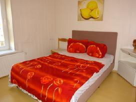 Jaukus butas su dviem miegamaisiais žaliakalnyje