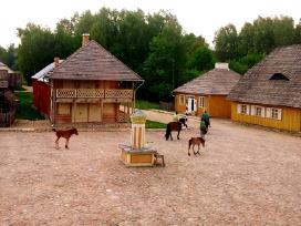 Sodybos nuoma Rumšiškių muziejuje - nuotraukos Nr. 3