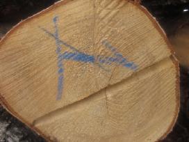 Ivairiu lapuociu malkos klaipedos apskrityje - nuotraukos Nr. 6