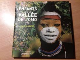 Knygą Les enfants de la valle de lomo (French)