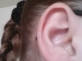 Gražus sidabrinių auskarų ir pakabuko rinkinys