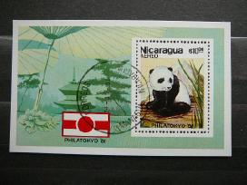 Pandos Meskos Nikaragva antsp. blk837