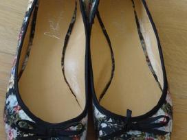 Bateliai, vandens batai - nuotraukos Nr. 2