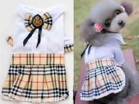 Suknelė šuniukui puošni