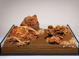 Akvariumo dekoracijos: akmenys, šakos