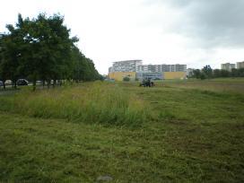 Žolės pjovimas, šienavimas Šiauliuose
