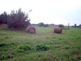 Parduodu 1,29 ha žemės ūkio paskirties sklypą