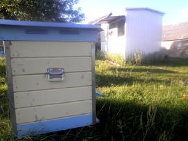 Ekologiškas, natūralus medus. 1kg/3.5eur