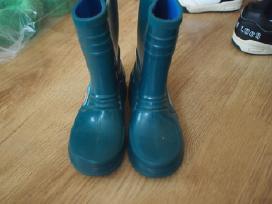 Zali botai