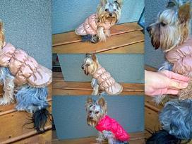 Nauji, šilti rūbai / drabužiai šunims