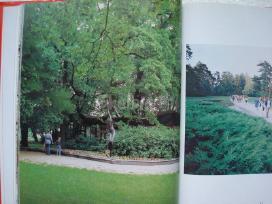 Foto iliustracijos