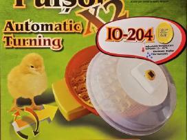 Automatiniai inkubatoriai, inkubatorius