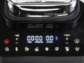 Greenis Fgr-8800 Profesionalus Blenderis , vitamix