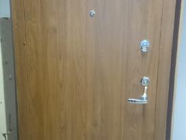 Vidaus šarvo durys