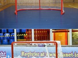 Vartai hokejaus