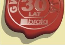 Kaminai už ypač gerą kainą 30metų garantija