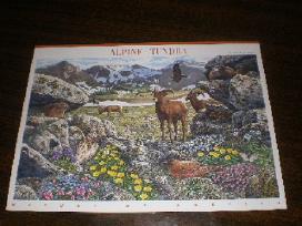 """Parduodu Jav pašto ženklus tema """"fauna """" - nuotraukos Nr. 2"""
