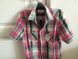 Trumparankoviai margi marškinėliai - nuotraukos Nr. 2