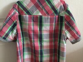 Trumparankoviai margi marškinėliai - nuotraukos Nr. 3
