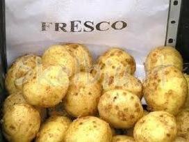>- Parduodu Ankstyvąsias Sėklines Bulves Adora-<