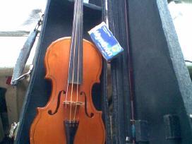 Smuikelis pradedanciam mokitis grot - nuotraukos Nr. 5