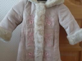 Žieminis paltas