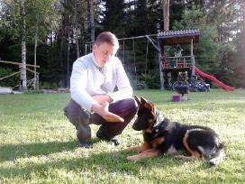 Šunų dresūra-iškilusių problemų sprendimas. - nuotraukos Nr. 11