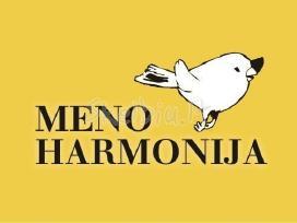 """Dailės pamokos studijoje """"meno harmonija"""""""