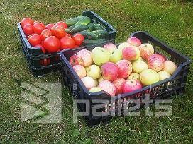 Parduodame plastikines dėžutes vaisiams, daržovėms