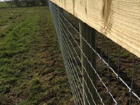Elnių , danielių tvoros