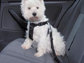 Automobilinis saugos diržas šuniui Trixie naujas
