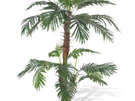 Dirbtinė Palmė, Cikas 150 cm, vidaxl
