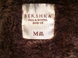 Mot.paltukas Bersha